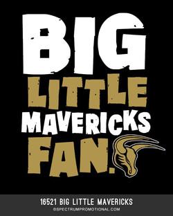 16521 Big Little Mavericks