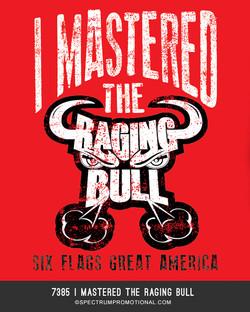 7385 I Mastered The Raging Bull
