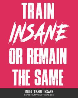 11826 Train insane