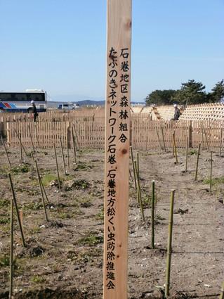 「みんなで造る海岸林再生プロジェクト」 植樹祭