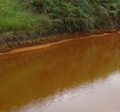 Figure 1. River Contamined With Acid Mine Drainage(Santa Catarina-Brazil)