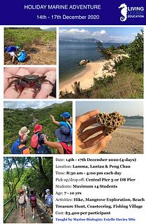 Holiday Marine Adventure Week 4_DecV1-1.