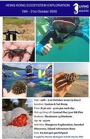 HK Ecosystem Exploration Week 3_October