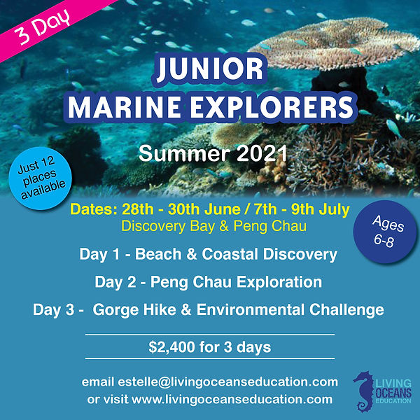 LOE_Junior_Explorer_2021_Final.jpg