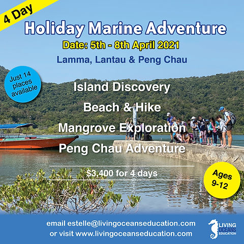 LOE_Easter_Camp_2021_Marine_Adventure_Fi