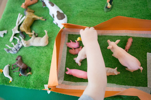 Playing with the farm animals