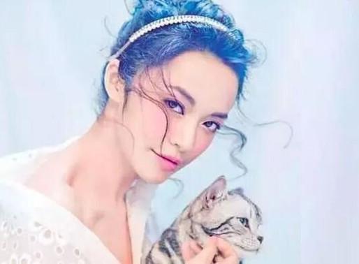 為何女生愛養貓?
