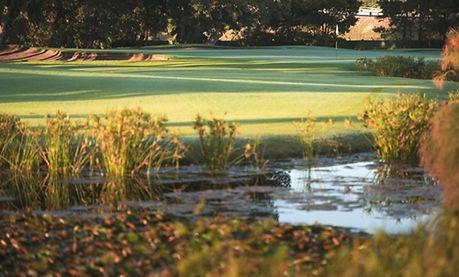 Royal Cape Golf Club 1.jpg