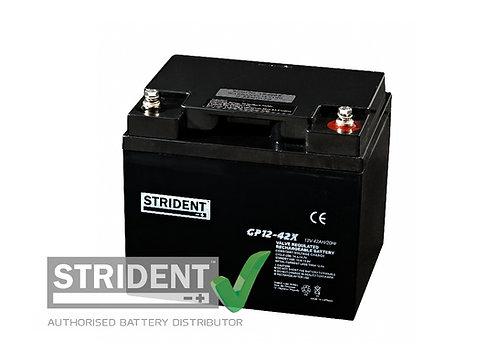 12volt 42ah AGM Mobility Battery