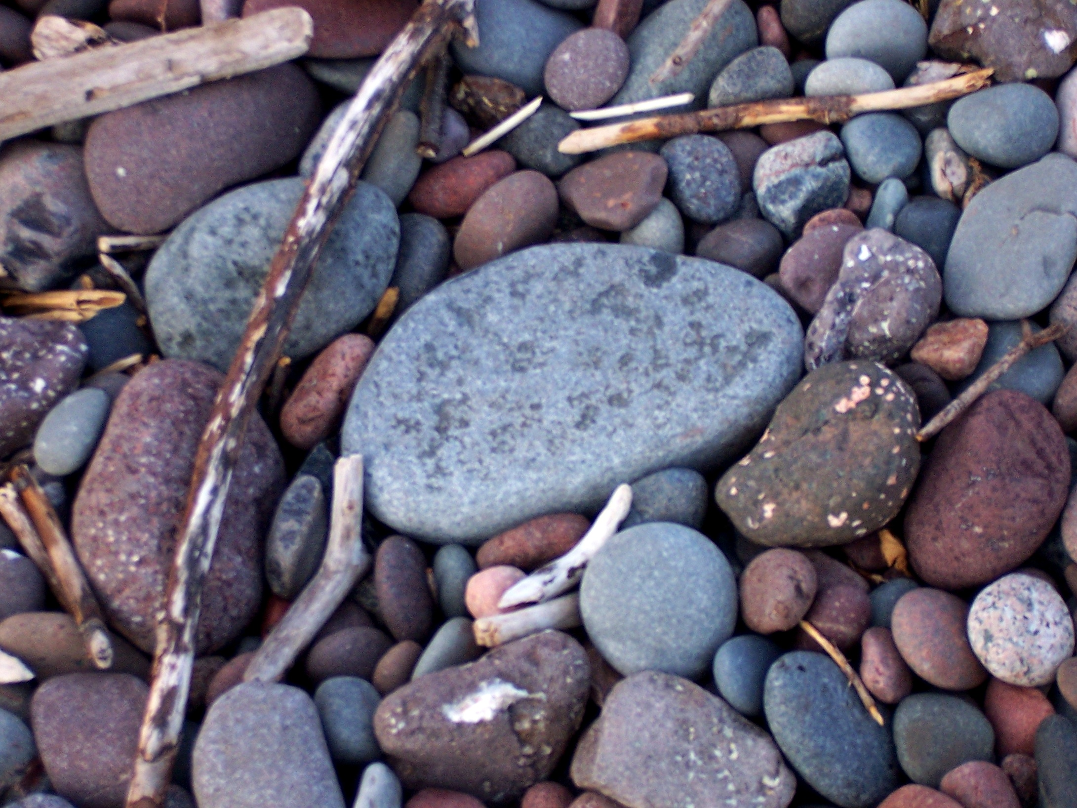 Shoreline texture