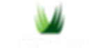 synlawn-logo-780x360.png