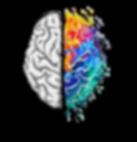 logo cerebro.png