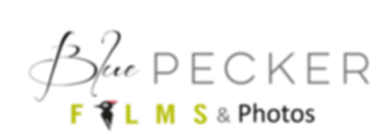 Blue pecker Films Logo 2.png