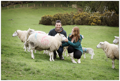 Blue Bug Photography Engagement Shoot with Sheep