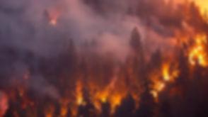 californiawildfires_080218getty.jpg