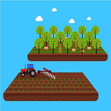 capas cursos_planejamento agro.jpg