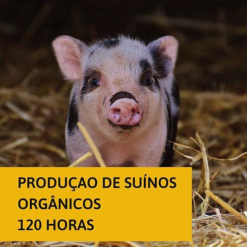 Produção de suínos orgânicos