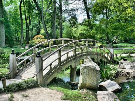 Como planejar um Jardim Japonês