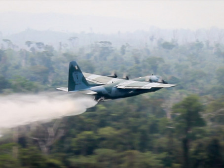 Governo mobiliza força total para conter queimadas