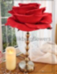 glikbergflowers-svetilnik - izolon).jpg