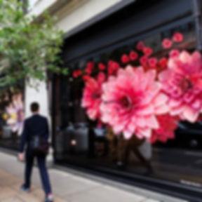 glikbergflowers-izolon-cveti-flowers46.j