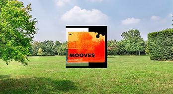 test mooves portf.jpg