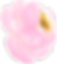 Pink-flower-3.png