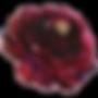burgundy-flower-3.png