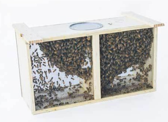 """3lb Package Bees directly from Don """"The Fat Bee Man"""" with mated, unmarked queen"""