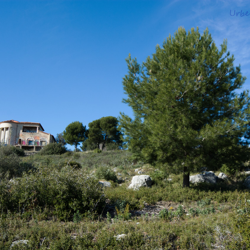 Villa dior 1