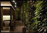 pareti vegetali veri e arificiali