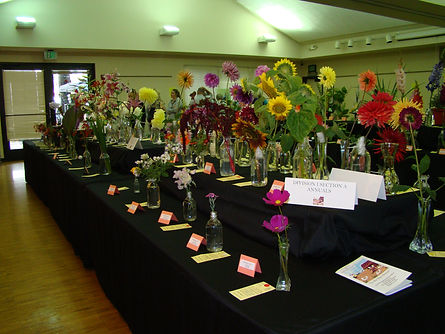 Annuals-table card-Schedule for guests.J
