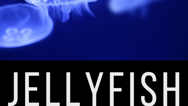 Jellyfish Club (Online)  Dec 26th,2020 10AM
