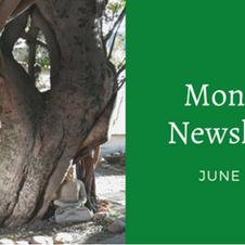 June 2021 Monthly Newsletter