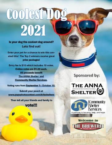 Coolest Dog 2021