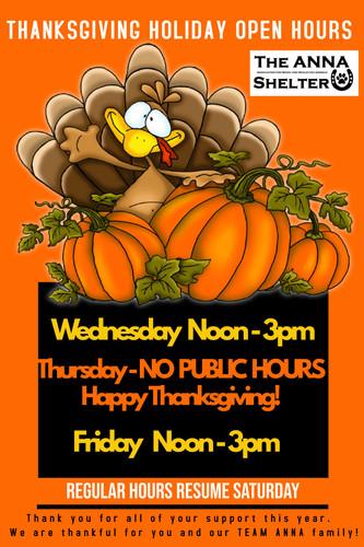 Copy of Thanksgiving Dinner Poster.jpg