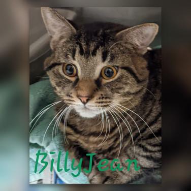 Billy Jean.jpg