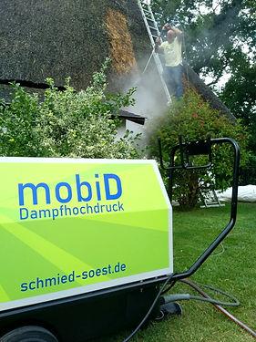 mobiD portr. 600hoch.jpg