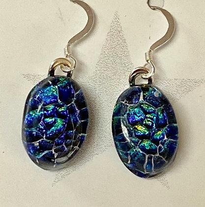Turtle Shell Oval earrings