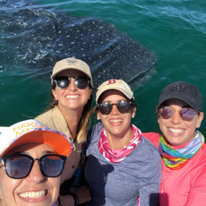 Having fun with whales sharks