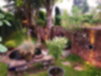 Photo 1 (Edit).jpg