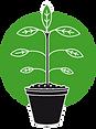 Zeichnung-Pflanze-300px.png