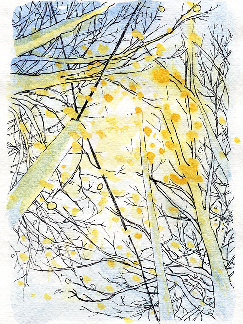 Lamplight, Autumn - original drawing with watercolour, framed