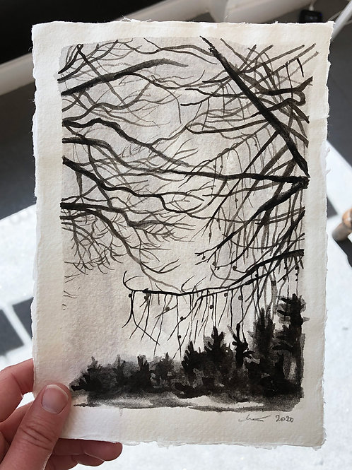 Larch Canopy - Ink on Paper