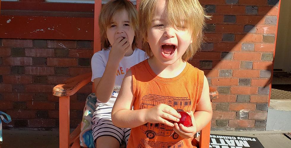 5 Boxes of Joy (Children's Breakfast Box)