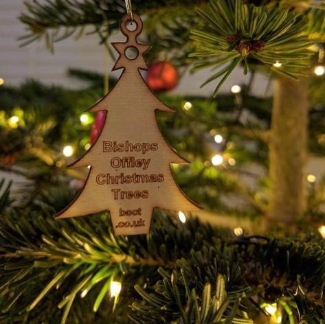 Bishops Offley Christmas Tree