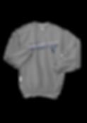 Knight's Sideline SweatShirt_edited.png