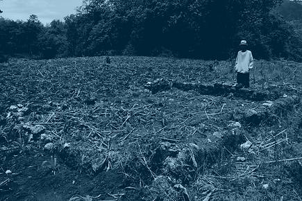 capa_projeto_GUATEMALA.png