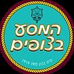 לוגו המסע בצופים .png
