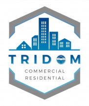 Tridom-logo_FINAL-color-250x300.png